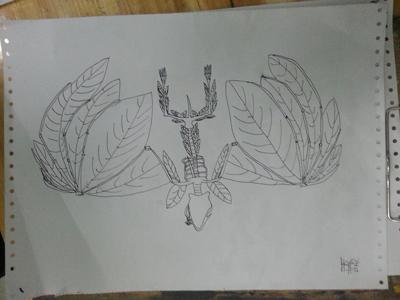 植物素描简笔画