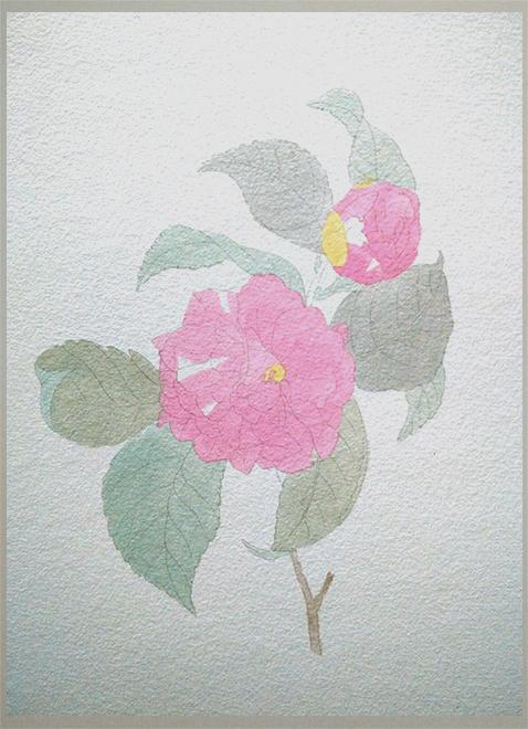 水彩花卉 - 成都美术培训_成都手绘培训_成都成人美术