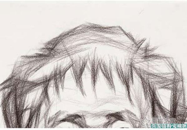 在我们画人物素描的时候是通过对人物的面部特征和整体外形的绘画来达到目的。头部的绘画中,五官及面部的刻画固然重要,不过很多初学者因为在这上面花了大量时间而忽略了头发的表现。因为很多同学不重视所以把头发处理的很随意。 要把头发画好确实有一些难度,因为头发不像面部有明显的结构起伏,也不像五官那样有特点特征。头发的形态也各式各样,短发长发卷发少发,以不同的形态附着在头部,让人不容易分辨出他的刻画重点。头发在头像的绘画中站很大面积比例,并且是人像外轮廓的一部分,也是反映人物性格形态的一个重要因素。 头发是附着在球体